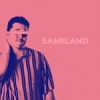 "Sameland's ""Tonic Take 2"" dives into some fun-loving funk, disco and pop rhythms"